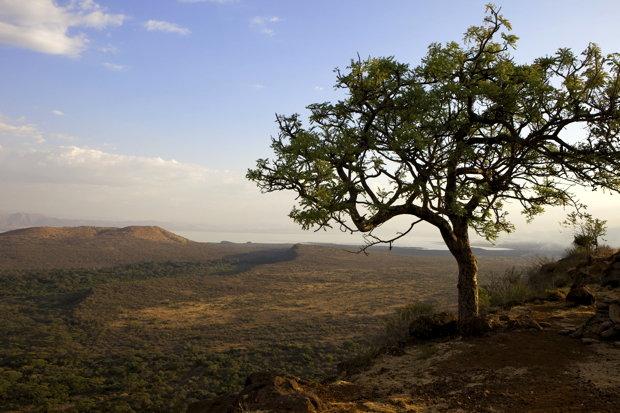 Direkt neben Arba Minch gelegen: Der Nechisar-Nationalpark (Foto: Robert Harding/Simon Montgomery/picture alliance)