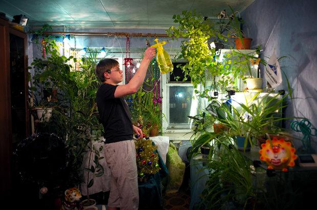 Die meisten Pflanzen in Norilsk findet man in Wohnungen, wo sie unter künstlichem Licht gehegt und gepflegt werden (Foto: Elena Chernyshova)