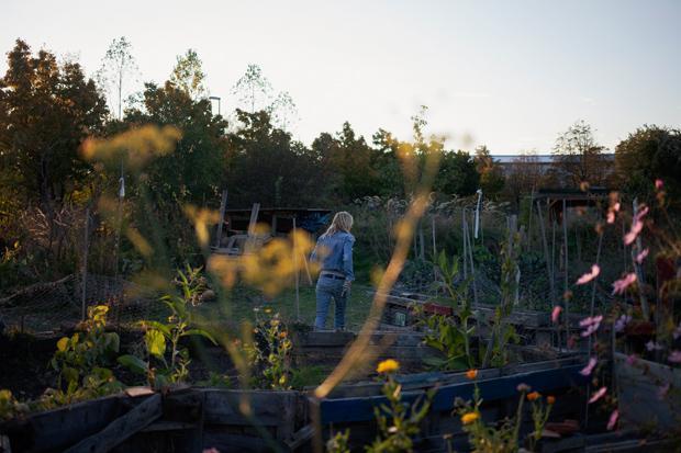 Ich möchte Teil einer Blumenbewegung sein: Den Großstadtgärtnern geht es ums Gemeinschaftserlebnis (Foto: Verena Kathrein)