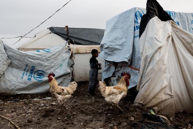 Es mangelt an allem. Manche der Lagerbewohner halten sich zur Selbstversorgung wenigstens ein paar Hühner (Foto: Sebastian Backhaus)