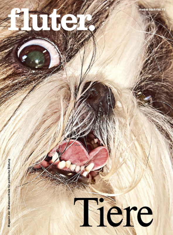 Cover fluter Nr. 72 Tiere