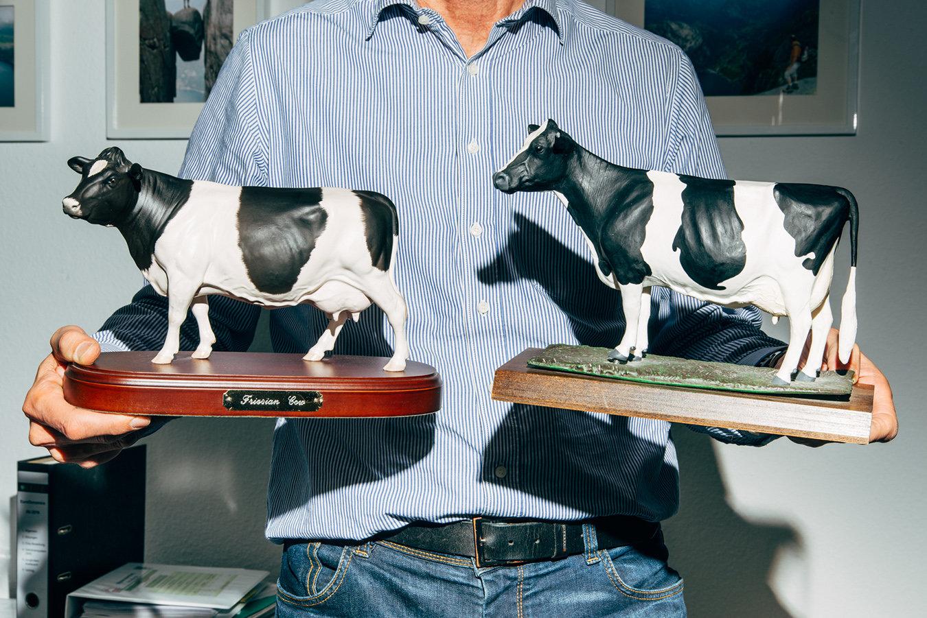 50 Jahre Zucht liegen zwischen der linken Kuh und der rechten. Je definierter die Rippen, erklärt der Präsident des Deutschen Holstein Verbands, desto besser