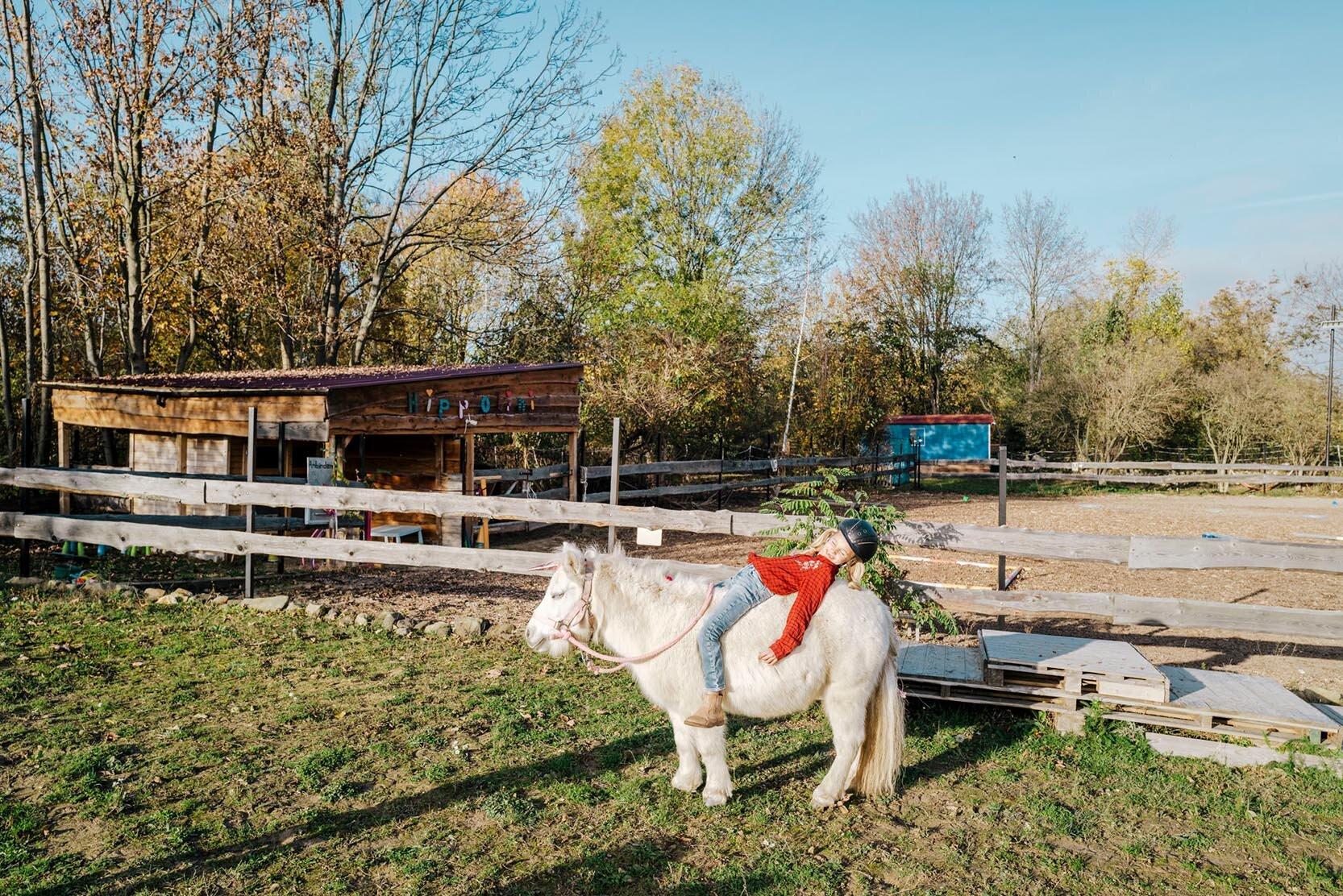 Pferdehof, Görlitz