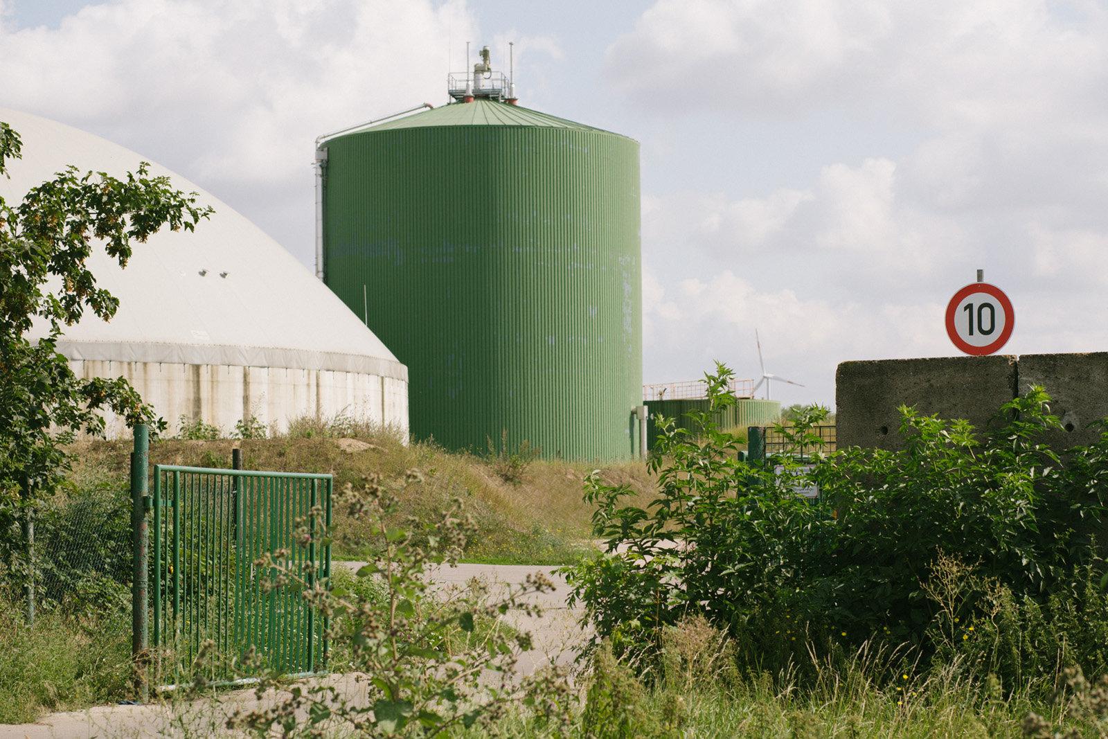 Schweinezucht in Neumark, Thüringen