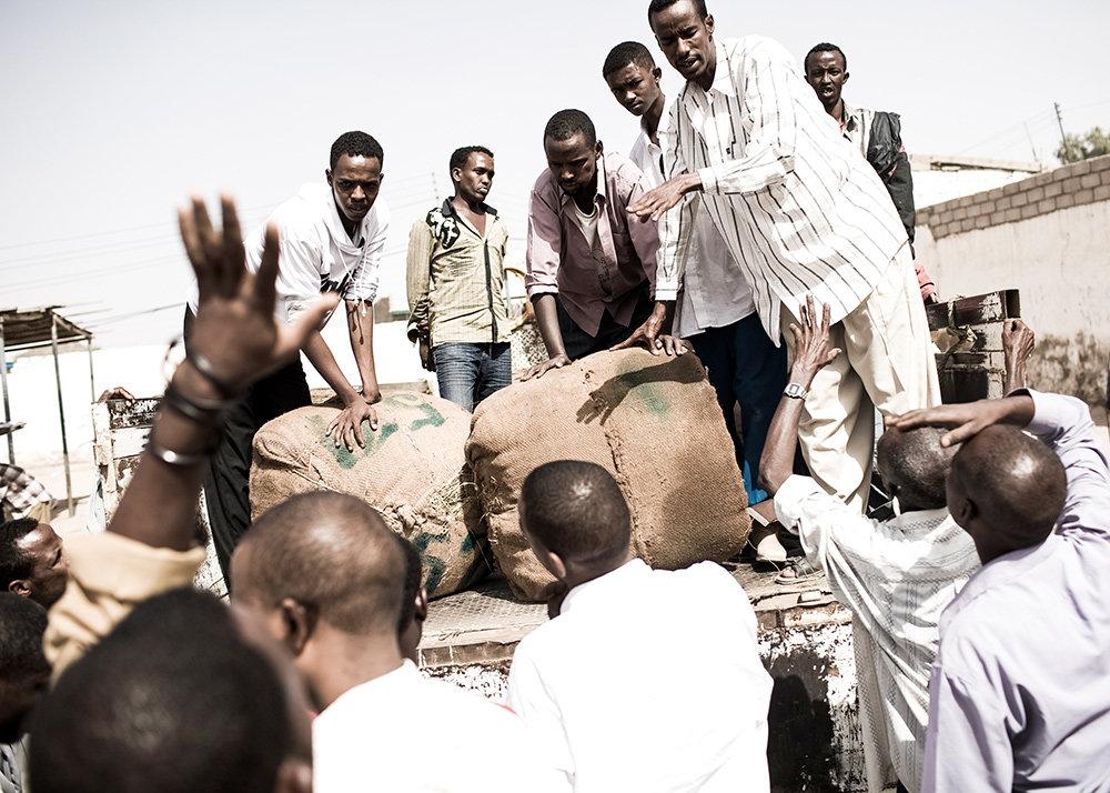 Männer laden Khat von einem Wagen (Foto: Narayan Mahon)