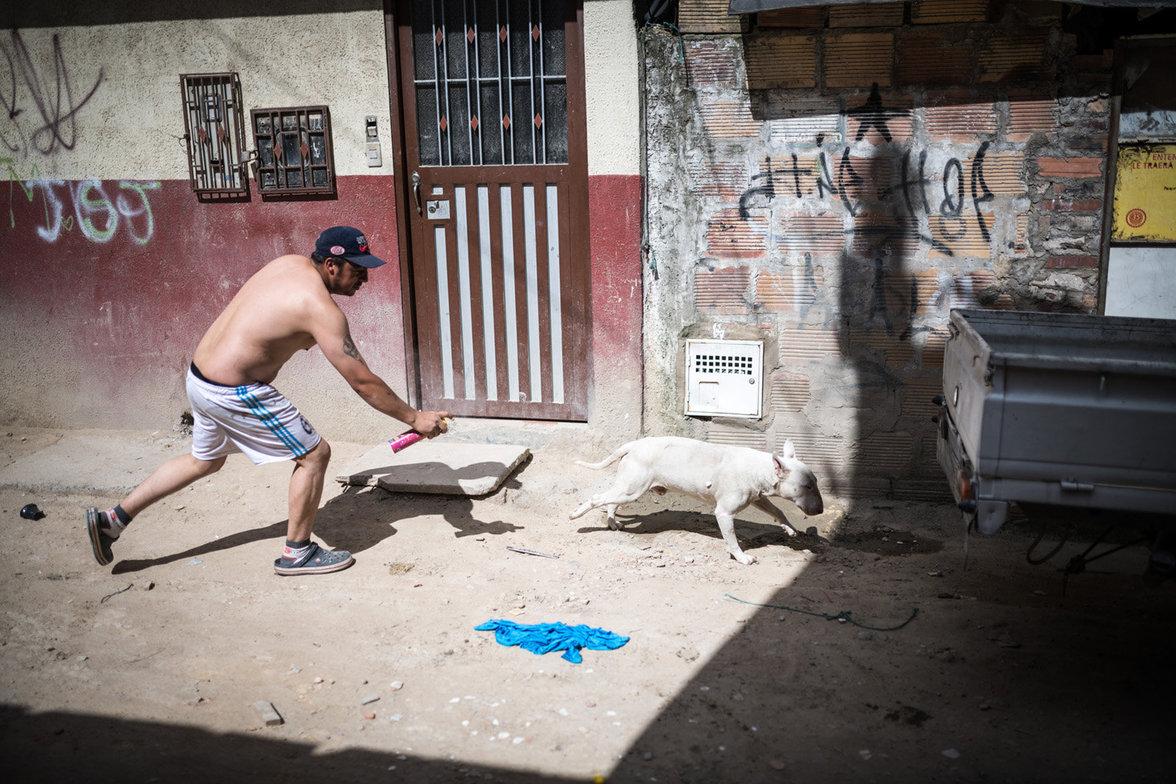 Mann mit Hund in Bogota