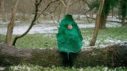 Eine Frau, die als Blatt verkleidet ist, sitzt auf einem Baumstamm