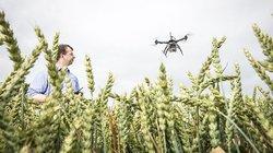 """""""Ährensache: Wer als Bauer was auf sich hält, schafft sich ein fliegendes Helferlein an"""""""