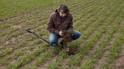 Landwirt auf dem Feld begutachtet ein Stück Boden