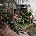 cms-image-000006515.jpg (Foto:  bio2.com)