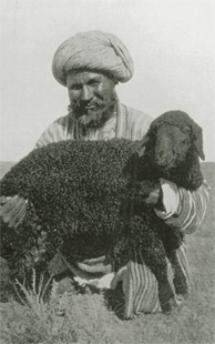 Usbekischer Schäfer   © Robert Byron (Foto: Robert Byron)