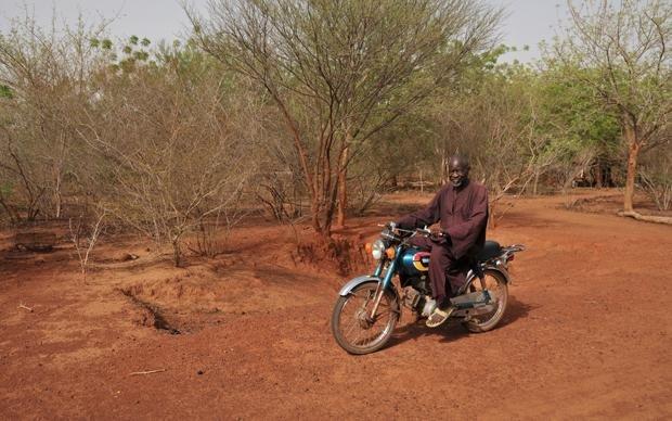 Unterwegs in seinem Wunderwald: 42 Fußballfelder misst Yacoubos Werk inzwischen (Foto: Andrea Jeska)