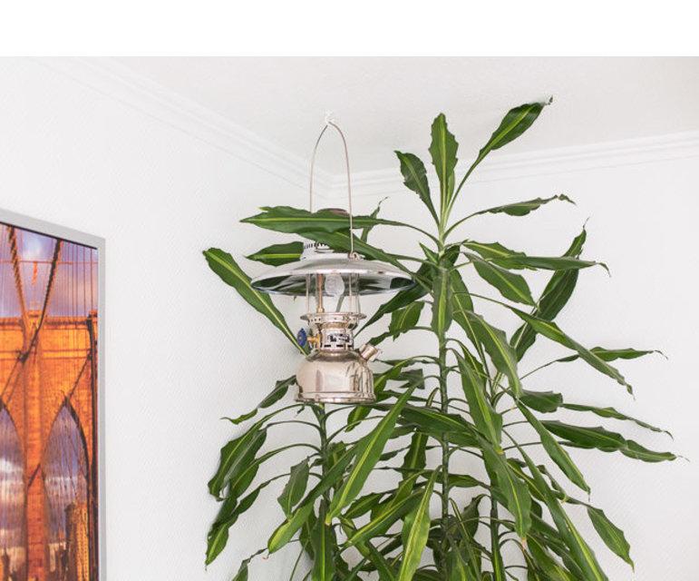 Eine Petroleum-Lampe, die wegen ihrer hohen Heizleistung zugleich schön wärmt