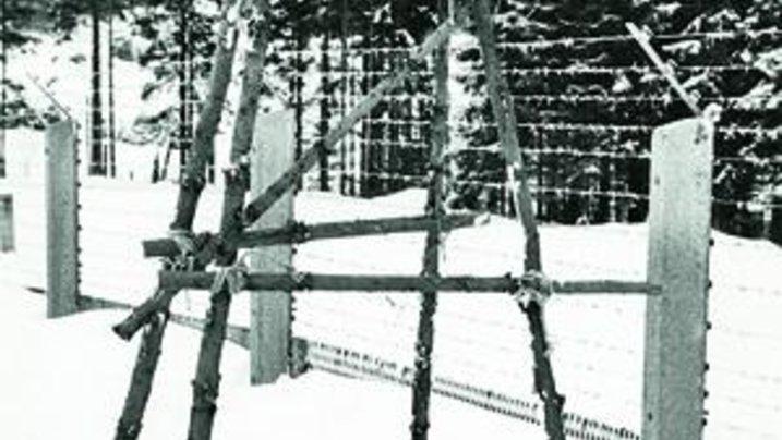 Mit dieser im Wald gebauten Leiter stiegen Jürgen Resch, sein Bruder und ein Freund über den Grenzzaun